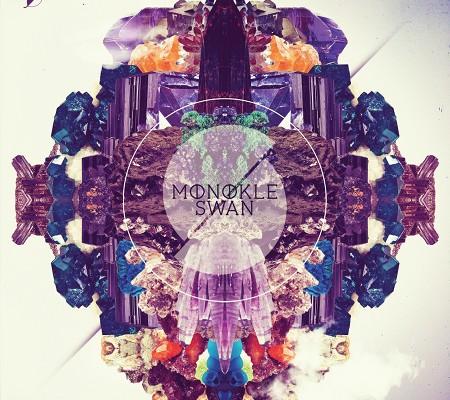 MonokleSwan10032012