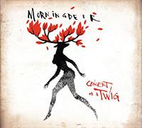 Morningdeer - Concert On A Twig