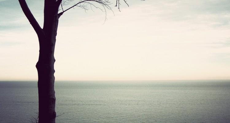 Martin-Nonstatic-Sense of Life