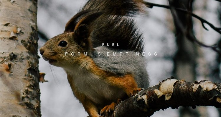 purl-form-is-emptiness