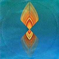 BOTANY - Lava Diviner