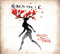 Morningdeer - Concert On A Twig