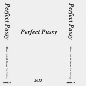 PERFECT PUSSY - I have lost all desire for feeling