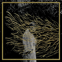 forest_swords_engravings1-500x500
